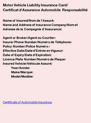 Image of electronic insurance card